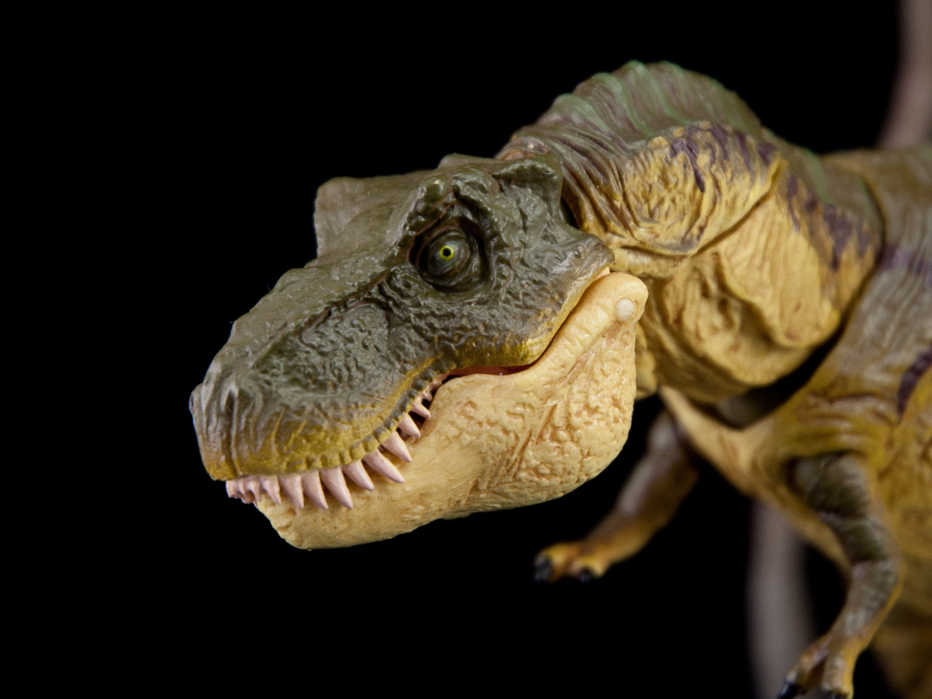 T Rex Dinosaur Birthday Cakes
