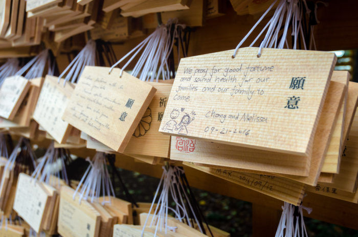 meiji-shrine-8984