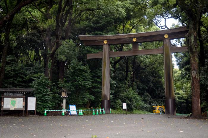 yoyogi-park-8927